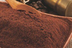 cacao Pakmaya horeca