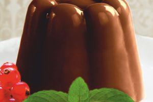 budinca de ciocolata Pakmaya horeca
